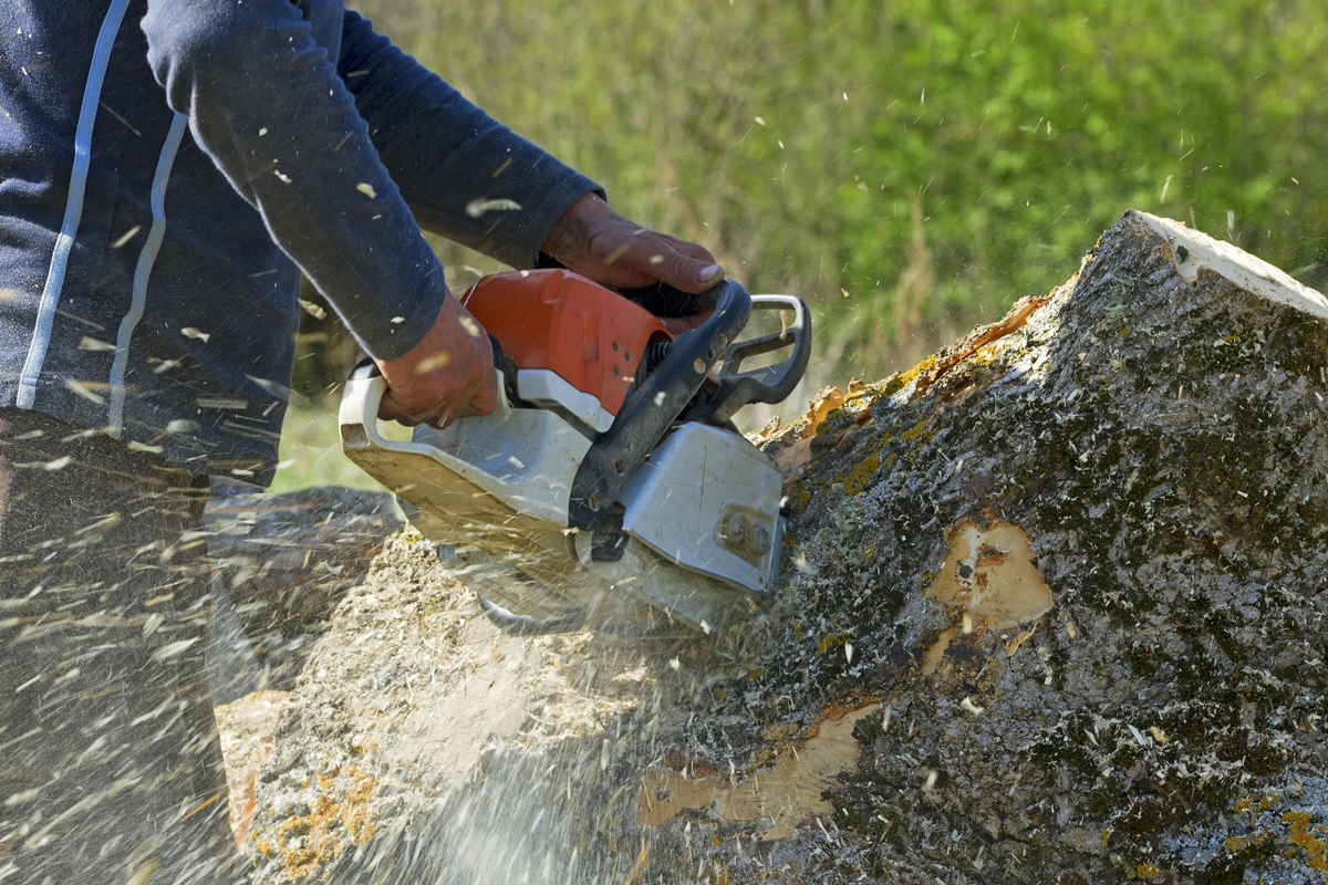 cobham stump grinding surgeons